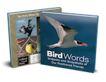 Cover of Bird Words