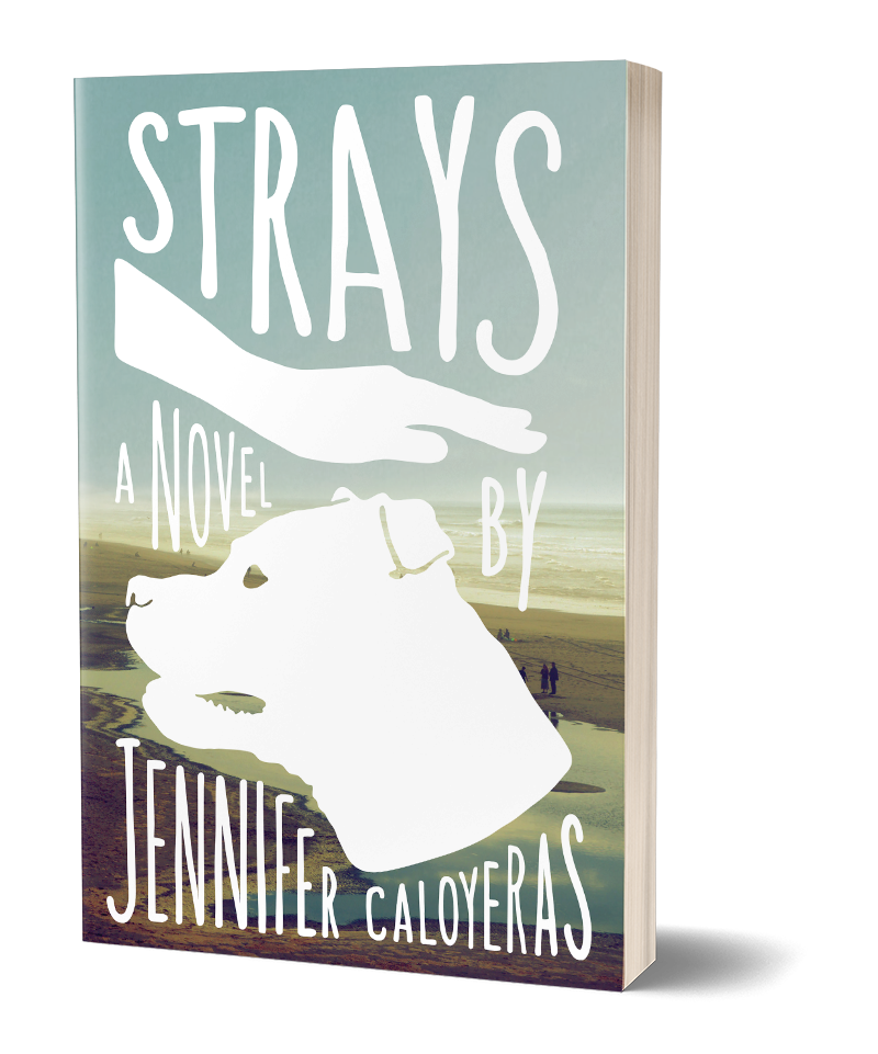 Cover of Strays: A novel by Jennifer Caloyeras